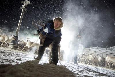 Sami Boja 3 - Director Elle Sofe Henriksen small